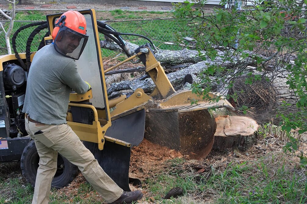 Contact Us-Henderson Tree Trimming and Stump Grinding Services-We Offer Tree Trimming Services, Tree Removal, Tree Pruning, Tree Cutting, Residential and Commercial Tree Trimming Services, Storm Damage, Emergency Tree Removal, Land Clearing, Tree Companies, Tree Care Service, Stump Grinding, and we're the Best Tree Trimming Company Near You Guaranteed!