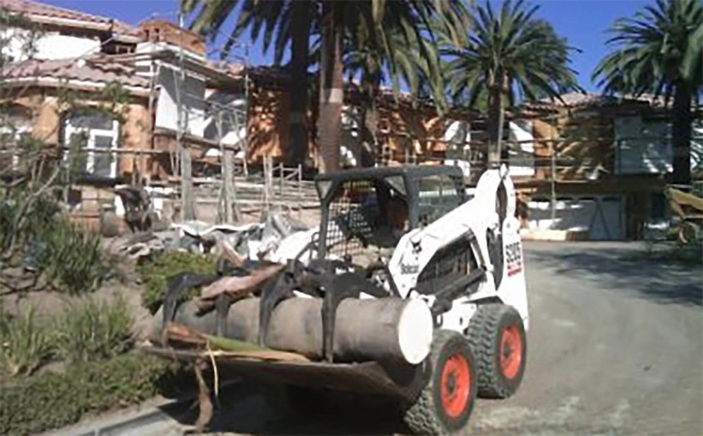 Palm-Tree-Removal-Henderson Tree Trimming and Stump Grinding Services-We Offer Tree Trimming Services, Tree Removal, Tree Pruning, Tree Cutting, Residential and Commercial Tree Trimming Services, Storm Damage, Emergency Tree Removal, Land Clearing, Tree Companies, Tree Care Service, Stump Grinding, and we're the Best Tree Trimming Company Near You Guaranteed!