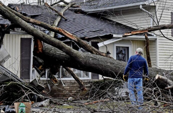 Storm-Damage-Henderson Tree Trimming and Stump Grinding Services-We Offer Tree Trimming Services, Tree Removal, Tree Pruning, Tree Cutting, Residential and Commercial Tree Trimming Services, Storm Damage, Emergency Tree Removal, Land Clearing, Tree Companies, Tree Care Service, Stump Grinding, and we're the Best Tree Trimming Company Near You Guaranteed!