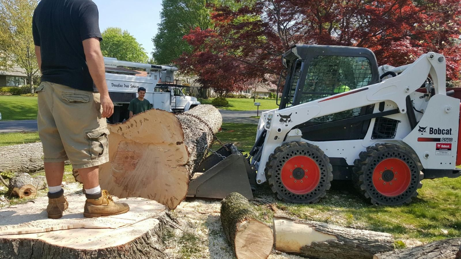 Enterprise-Henderson Tree Trimming and Stump Grinding Services-We Offer Tree Trimming Services, Tree Removal, Tree Pruning, Tree Cutting, Residential and Commercial Tree Trimming Services, Storm Damage, Emergency Tree Removal, Land Clearing, Tree Companies, Tree Care Service, Stump Grinding, and we're the Best Tree Trimming Company Near You Guaranteed!