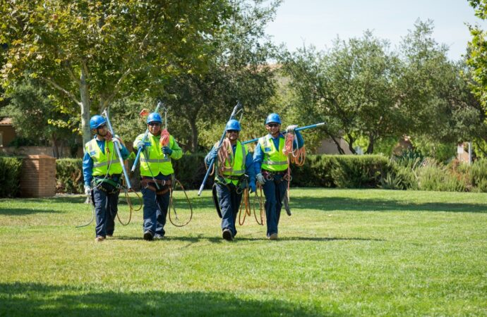 Silverado Ranch-Henderson Tree Trimming and Stump Grinding Services-We Offer Tree Trimming Services, Tree Removal, Tree Pruning, Tree Cutting, Residential and Commercial Tree Trimming Services, Storm Damage, Emergency Tree Removal, Land Clearing, Tree Companies, Tree Care Service, Stump Grinding, and we're the Best Tree Trimming Company Near You Guaranteed!